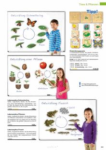 Katalog LIEBER LERNEN Seite 141