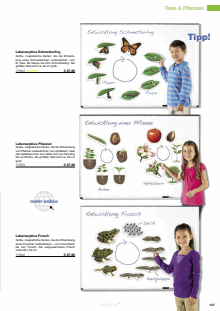 Katalog LIEBER LERNEN Seite 147